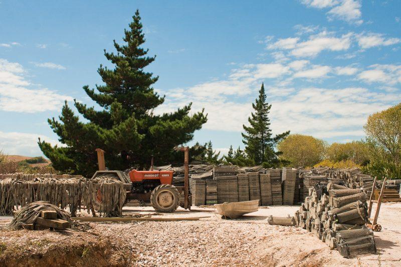 Продолжение заднего двора фермы