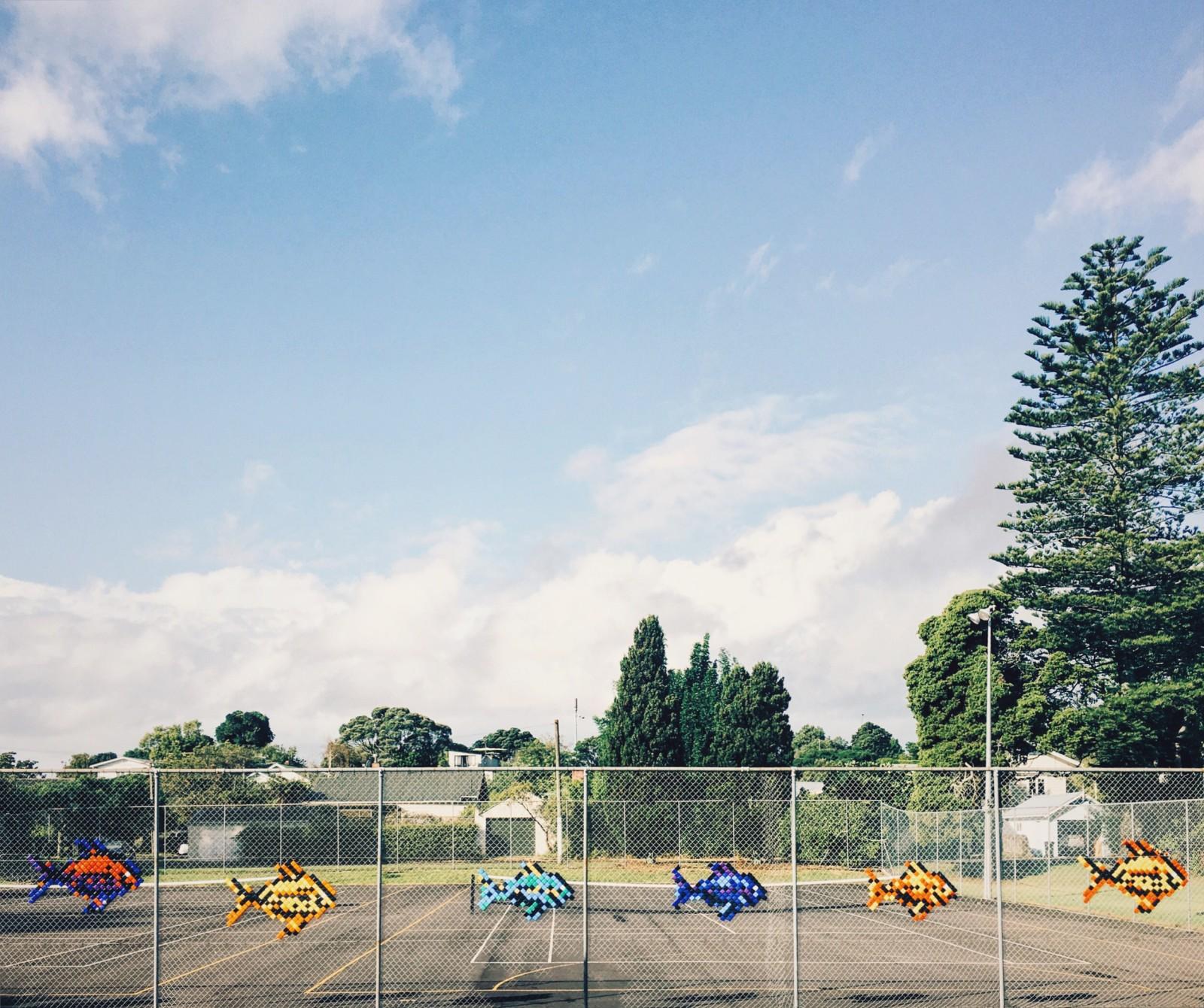 Варианты переездов в Новую Зеландию. Их много.
