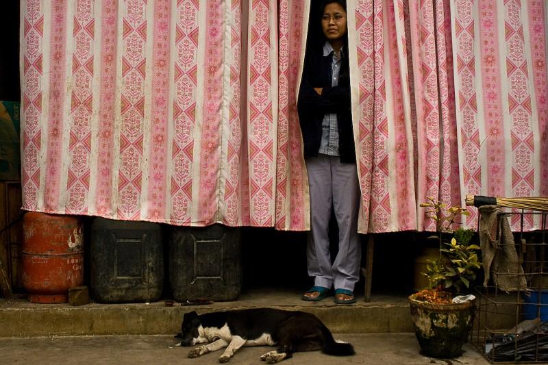 Женщина за шторой и собака