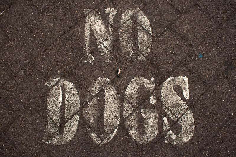 Нет собакам
