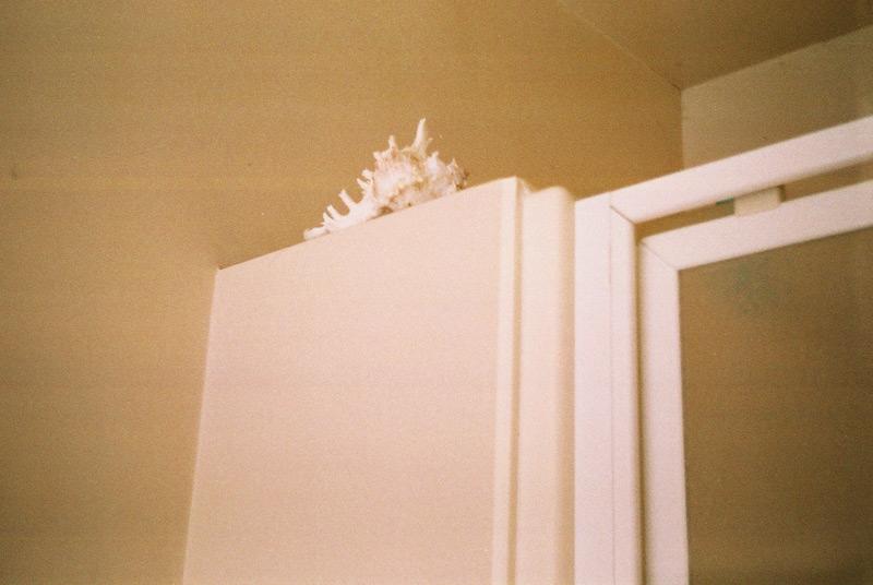 Ракушка в ванной