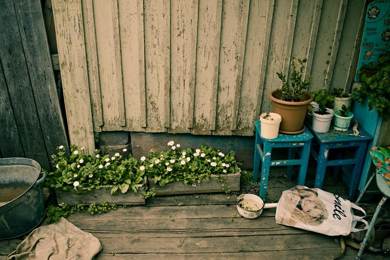 Бабушкин двор