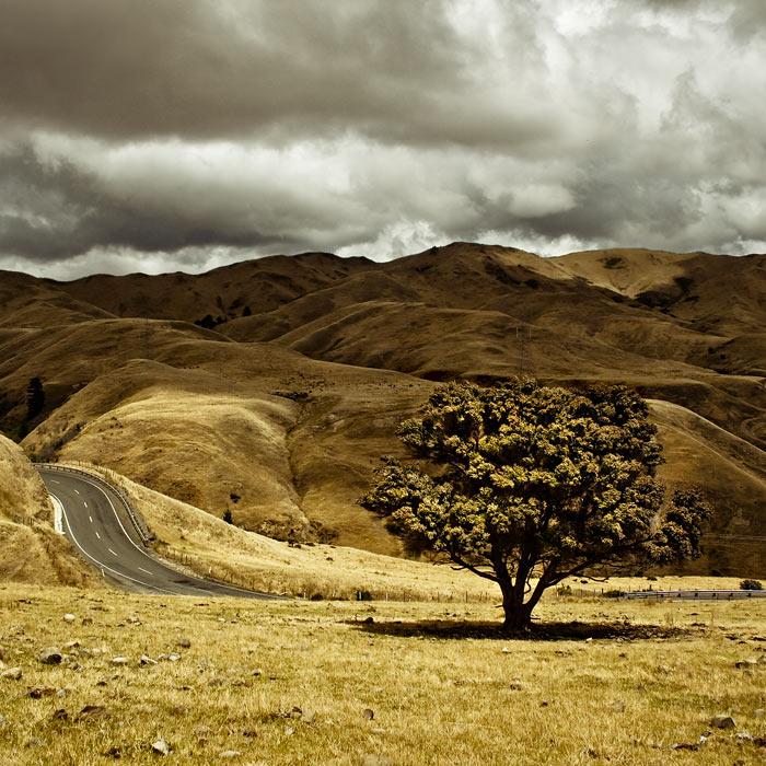 Вельветовые холмы близ Нельсона