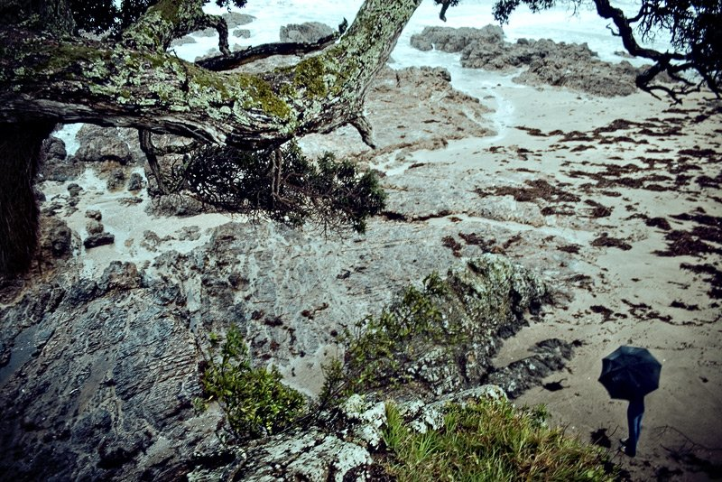 http://piterpan.ru/waihike_tree_roock_nata1.jpg